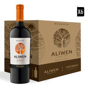 Caja-Aliwen-Carmenere