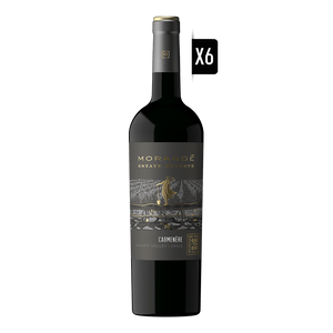 MORANDE-ESTATE-CM-X6
